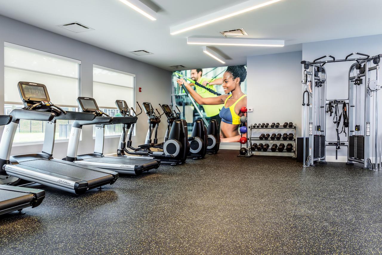 sala de fitness companii